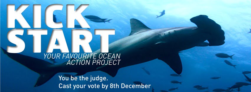 Ocean Action Project  2013: vote for The Great Fiji Shark Count!